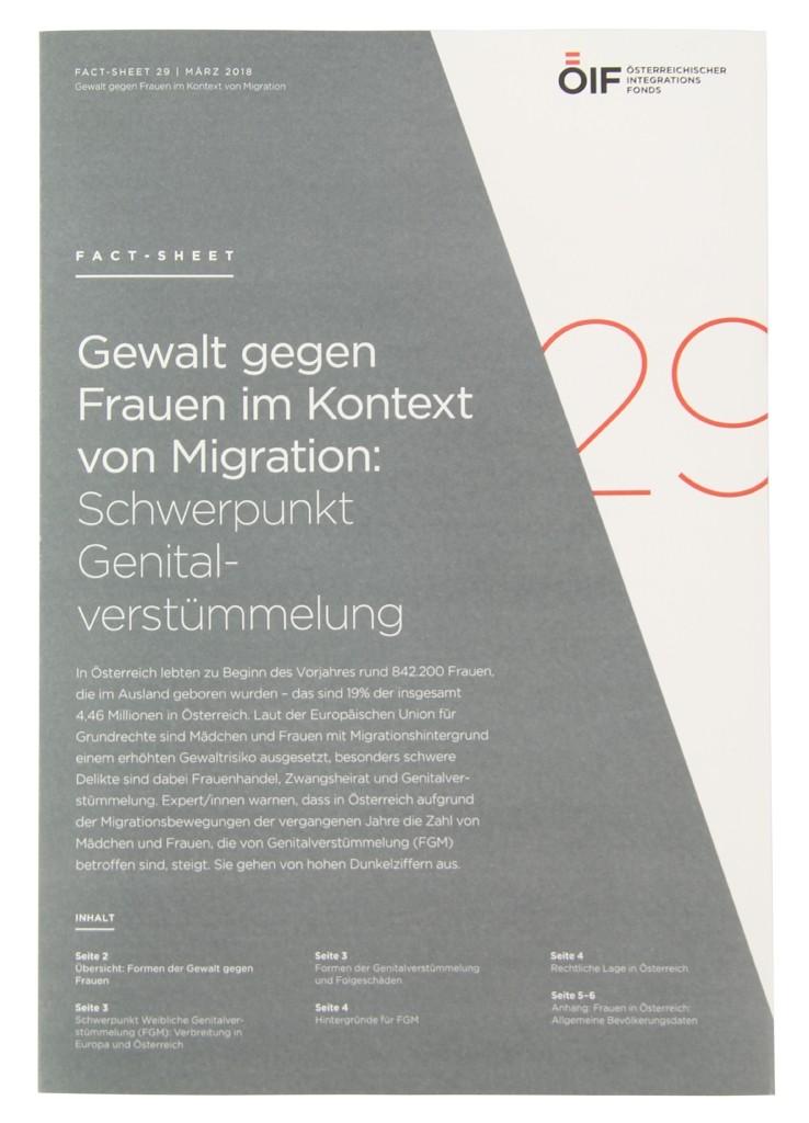 Gewalt gegen Frauen im Kontext von Migration: Schwerpunkt Genitalverstümmelung